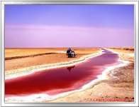 Trip to Tunisia - Chott El Jerid - The salt lake